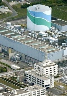 Nhật Bản cấp phát điện hạt nhân sau 2 năm