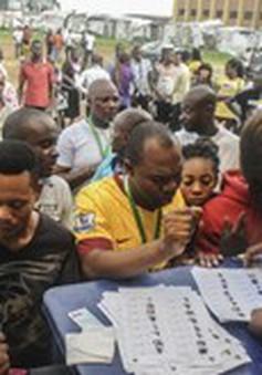Ủy ban bầu cử Nigeria điều tra các cáo buộc gian lận