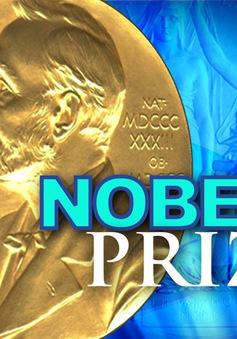 Giải thưởng Nobel 2015 và những bí mật ít người biết