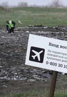 Vụ rơi máy bay MH17: Một năm nhìn lại