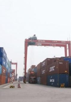 """Đề xuất thu mua hàng nghìn container """"bỏ quên"""""""