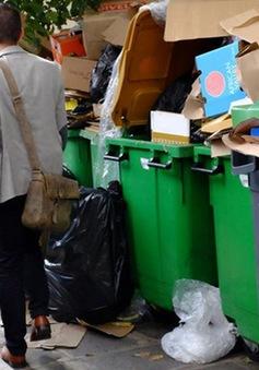 Pháp: Công nhân vệ sinh đình công, Paris 'ngập' trong rác thải