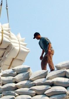 Việt Nam xuất khẩu hơn 2 triệu tấn gạo