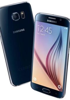 2015: Samsung sẽ tiêu thụ được 50 triệu chiếc Galaxy S6?