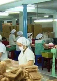40% DN vừa và nhỏ Việt Nam sản xuất theo hướng xuất khẩu