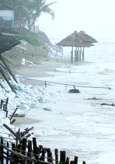 Nạn xâm thực biển đang diễn ra hết sức gay gắt tại miền Trung