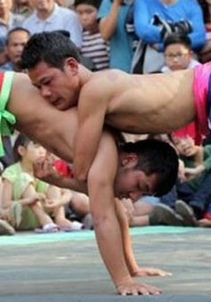 Sới vật làng Tam Trinh: Lưu giữ các giá trị tinh thần đặc sắc
