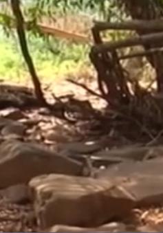 Sông Sêrêpôk huyền thoại trơ đáy, du lịch Đăk Lăk trước nguy cơ bị xóa sổ