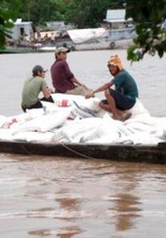 Đồng Tháp: Buôn lậu gia tăng theo mùa nước nổi