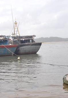 Phú Yên: 600 tàu thuyền mắc kẹt do cửa biển bồi lấp