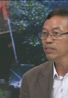DN tôn thép Việt lao đao với hàng nhập khẩu giá rẻ