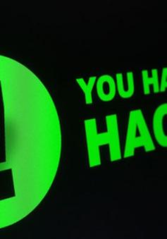 Hơn 1.000 website Việt Nam bị tấn công trong hai ngày