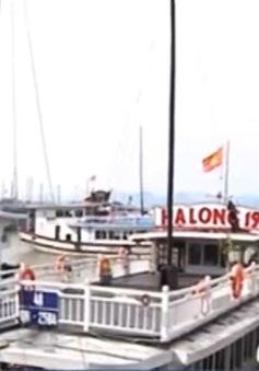 Quảng Ninh dừng cấp phép xuất bến cho tàu chở khách