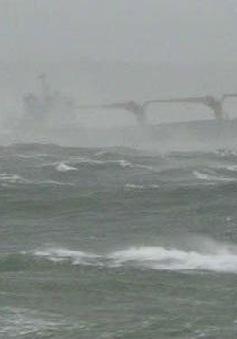 Khẩn trương tìm nguyên nhân việc 3 thuyền viên Việt Nam mất tích ngoài khơi Nhật Bản