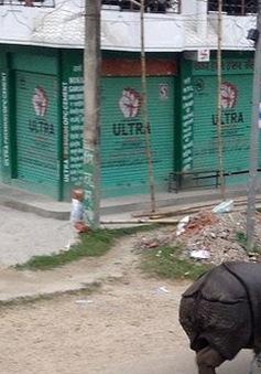 Tê giác tấn công người tại Nepal