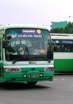 DN vận tải xe Bus xin miễn truy thu hơn 100 tỉ đồng