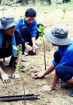 20 năm chương trình phái cử tình nguyện viên của JICA tại Việt Nam