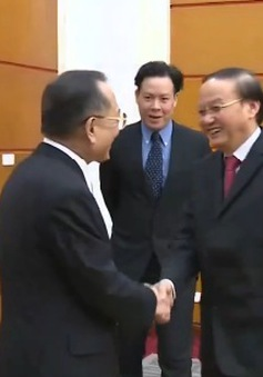 Đồng chí Tô Huy Rứa tiếp Chủ tịch Thượng viện Nhật Bản