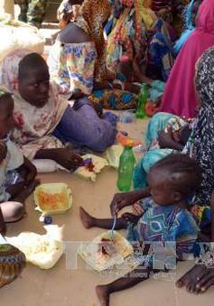 Nigeria giải cứu gần 180 con tin bị Boko Haram giam giữ