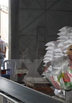 Xuất khẩu gạo 2015 của Việt Nam có khả năng đạt 6,8 triệu tấn