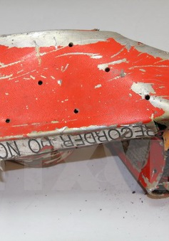 Hướng điều tra mới trong vụ tai nạn máy bay Airbus A320