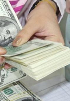 DN sẽ được chuyển tiền ra nước ngoài trước khi có giấy phép đầu tư