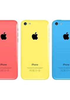 iPhone 6C sẽ lên kệ vào tháng 4/2016?