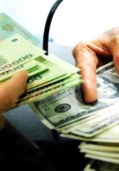 TP.HCM: Đã có sự dịch chuyển từ tiền USD sang VND