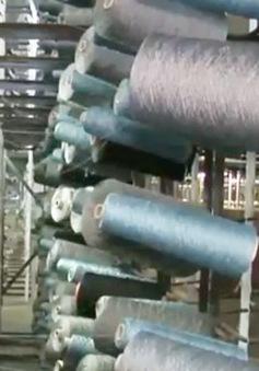 Nam Phi: DN áp dụng hiệu quả công nghệ xanh trong sản xuất