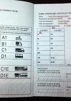 Chưa cấp giấy phép lái xe quốc tế cho công dân Việt Nam từ 1/10