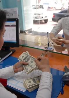 Giá USD bật tăng tới 110 đồng so với mở cửa buổi sáng