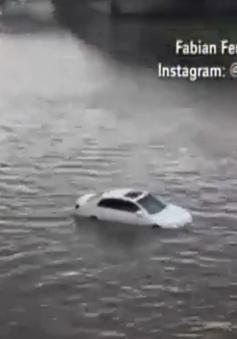 Mỹ: Ngập lụt tạiAtlanta do vỡ đường ống nước