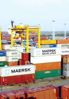 Cảng biển tiếp tục hấp dẫn nhà đầu tư trong nước