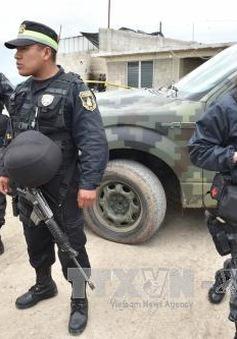 Mexico: Bắt giữ 7 quan chức nghi dính líu vụ trùm ma túy vượt ngục