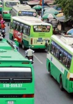 Dù bị phạt, xe buýt giả vẫn tung hoànhtrên QL 1 và QL 51