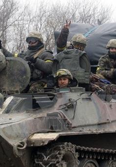 OSCE: Các bên xung đột ở Ukraine tiếp tục rút vũ khí hạng nặng