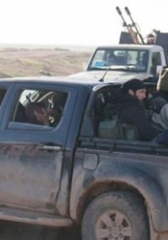 Mỹ truy tìm nguồn gốc loạt xe hơi của IS