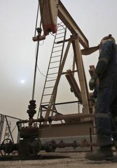 Kuwait đình công lớn, giá dầu thế giới mong manh giữ giá