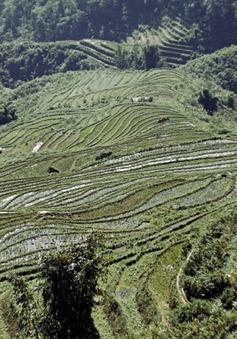 Việt Nam đứng đầu top 10 điểm du lịch một mình