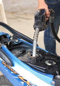 Hôm nay (4/8), giá xăng có thể tiếp tục giảm