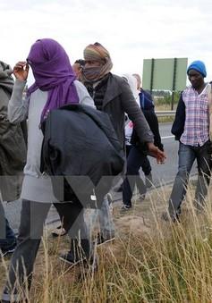Đụng độ giữa cảnh sát và người di cư tại Calais (Pháp)