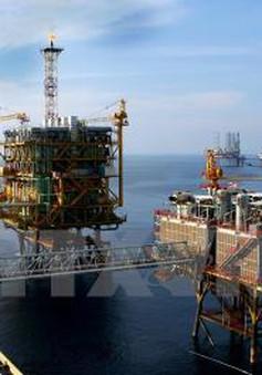 IEA: Thị trường dầu mỏ sẽ cân bằng hơn vào cuối năm 2016