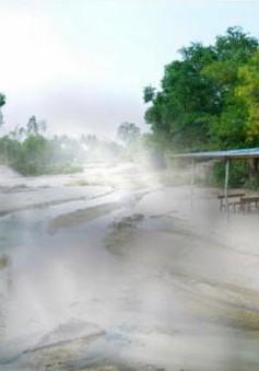 Bình Định thu hồi 4 dự án đầu tư du lịch chậm triển khai