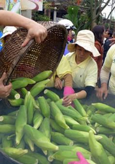 Lễ hội đầu xuân ở Quảng Nam: Tôn nghiêm và yên bình