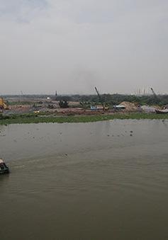 TP.HCM: Nước bị nhiễm mặn, không thể dùng tưới cây ở Thủ Thiêm