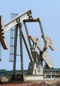 Giá dầu giảm xuống mức thấp nhất trong 12 năm