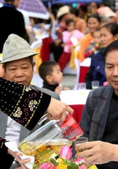 Khai mạc lễ hội trà hoa vàng tại Quảng Ninh