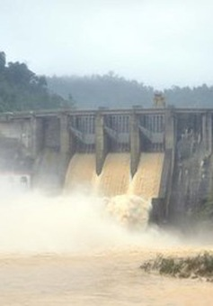 Thủy điện Hố Hô bị phạt hơn 100 triệu đồng