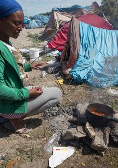 Pháp khuyên người tị nạn Calais từ bỏ giấc mơ tới Anh