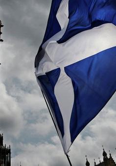 Scotland cân nhắc tổ chức trưng cầu dân ý tách khỏi Anh lần 2